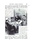Страница 561
