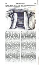 Страница 736