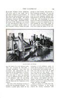Страница 245