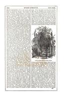 Страница 541