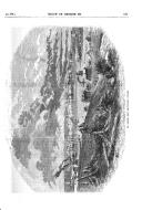 Страница 511
