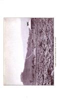 Страница 5994