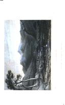 Страница 306