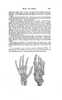 Страница 381