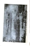 Страница 424