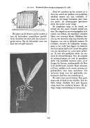 Страница 354