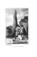 Страница 310