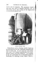 Страница 338