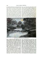 Страница 784