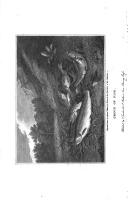 Страница ii
