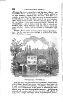Страница 214