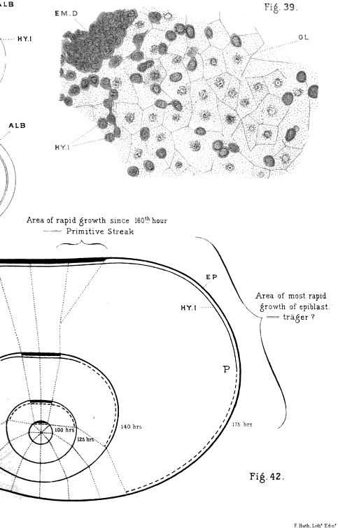 [merged small][merged small][merged small][graphic][merged small][subsumed][merged small][merged small][merged small][merged small][merged small][merged small][merged small][merged small][merged small][merged small][merged small][merged small][merged small]