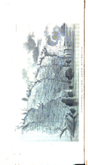 Страница 152