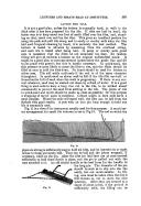 Страница 283