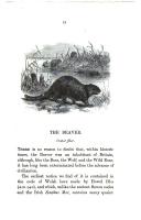 Страница 33